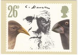 'Finches' - Charles Darwin  (26p Stamp) -  1982 - (U.K.) - Postzegels (afbeeldingen)