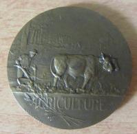 France - Médaille Agriculture - Comice Agricole Du Canton De Blanzac - Bronze - Signée L. O. Mattéi - Non-datée - France
