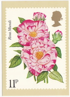 'Rosa Mundi' - Rose  (11p Stamp) -  1979 - (U.K.) - Postzegels (afbeeldingen)