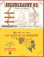 2 Buvards Anciens  ENGRAIS D'AUBY (Nord) SOLUBLEAUBY 63 (jardinier) CLEFS DE LA REUSSITE (trousseau) HUMAUBY NITRAUBY SO - Farm