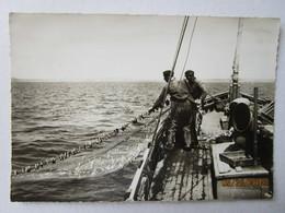 CP 29 La Pêche à La Sardine Dans La Baie De DOUARNENEZ - Douarnenez