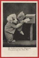 NL.- Die Briefkaart Moet Naar Muizenstad, Daar Woont Mijn Lieve Tante Kat. Poes. Hond. 1936 - Humor
