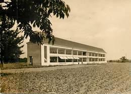 - Dpts Div.-ref-X444- Indre Et Loire - Mettray -sanatorium Bel Air -la Membrolle Sur Choisille - Epreuve Carte Postale - Mettray