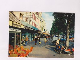 CPM DPT 78 MAISONS LAFFITTE, AV DE LONGUEIL En 1982! - Maisons-Laffitte