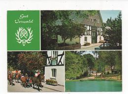 5948  SCHMALLENBERG, GUT VORWALD  ~ 1970 - Deutschland