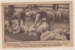 8AK1132 Agriculture Carte Commerciale La Redoute Roubaix Tricoteuses Tonte Moutons Pour Laine Ouvriers Au Travail 2 SCAN - Breeding