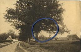 'S Gravenwezel :   Kattenberg ( Kasteel )   ( Geschreven  Met Zegel ) - Belgique