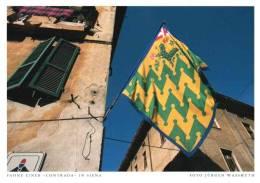 Siena . Fahne Einer Contrada . Toskana - Siena