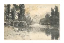 Millau - Les Bords De La Dourbie - Lavandière - 87 - Millau