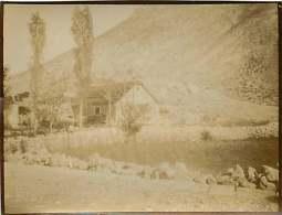 280518 - PHOTO 1905 - MONTENEGRO Ferme - Montenegro