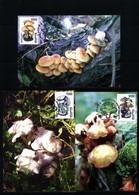 Belarus 1999 Mushrooms Maximumcards - Pilze