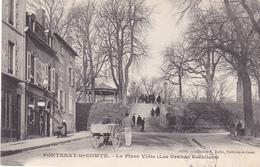 LAU- FONTENAY  LE COMTE  EN VENDEE LA PLACE VIETE  LES GRANDS ESCALIERS  CPA  CIRCULEE - Fontenay Le Comte