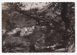 CPSM 20 2 A BOCOGNANO - Autres Communes