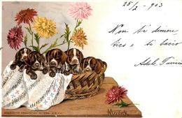 [DC11986] CPA - ILLUSTRATA FIRMATA MAILICK - CUCCIOLI DI CANE - PERFETTA - Viaggiata 1903 - Old Postcard - Mailick, Alfred
