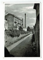 20911   CPM   FARRA DI SOLIGO  ! ( Particolare ) Via Patrioti ? Jolie Carte Photo ! PAS COURANTE !! - Treviso