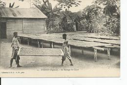 GABON       N'KOGO    Sèchage Du Cacao - Gabon