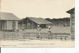 GABON       N'KOGO  Plantation De Cacao ,le Sechoir - Gabon