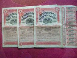 COLOMBIA / COLOMBIE : Share / Lot De 3 Actions COROCORO UNITED  COPPER MINES  1910 - Otros