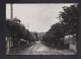 CPSM 78 - BEYNES - Avenue De La Gare - Très Jolie Vue De L'allée Avec Arbres De Chaque Côté - Beynes