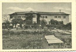 Israel Palestine, NAHALAL נַהֲלָל, Moshav, Girl's Training Farm 1930s Tmunia 224 - Israele