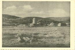 Israel Palestine, MIZRA מִזְרָע, Kibbutz, Panorama (1930s) Tmunia Postcard 222 - Israel