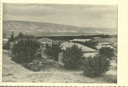 Israel Palestine, DEGANIA ALEF דְּגַנְיָה, Kibbutz (1930s) Tmunia Postcard 196 - Israel