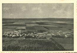 Israel Palestine, BEIT ALFA בֵּית אַלְפָא, Kibbutz (1930s) Tmunia Postcard 200 - Israel