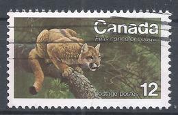 Canada 1977. Scott #732 (U) Animal, Eastern Cougar * - 1952-.... Règne D'Elizabeth II