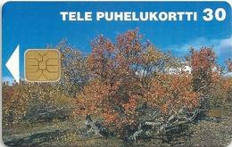 Finland - Sonera - Alpine Birch - 08.1997, 50.000ex, Used - Finland
