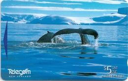 New Zealand - Humpback Whale, Antarctica II, 412BO, 1997, 115.000ex, Used - New Zealand