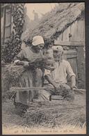 En Beauce - Faiseurs De Liens - Cultivation