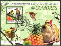 {CM24} Comoros 2009 Birds S/S Used / CTO - Comores (1975-...)