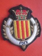 FOIX-ARIÈGE 09 -Écusson Blason Tissu/Feutrine Brodé-Écussons-Blasons Crest Coat Of Arms Faire Défiler - Scudetti In Tela