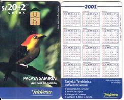 PERU - Bird, Pacaya Samiria/Ave Cola De Caballo, Calendar 2001, Telefonica Telecard, Chip GEM3.3, Tir 50000, 11/00, Used - Peru