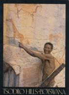 Tsodilo Hills Botswana, Native With Bow And Arrow, Animal Art On Wall Or Cliff, C1990s Vintage Postcard - Botswana