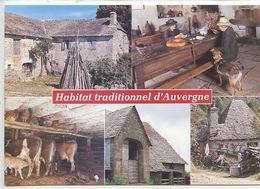 Habitat Traditionnel D'Auvergne Maison Granit Basalte (lave) étable Grange Toit Lauze (cp Vierge N)15/77) - Paysans