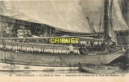 29 Concarneau, La Pêche Au Thon, Disposition Du Poisson Sur Le Pont Des Bateaux, Beau Plan Des Marins Au Travail - Concarneau