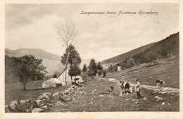 CPA-environs De MITTLACH (68)-Langenwasen Et La Ferme Auberge-Maison Forestière Herrenberg  En 1918 - Autres Communes