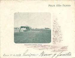 CARTE LETTRE (entier Postal 1902) - Gallegos (santa Cruz). - Argentine
