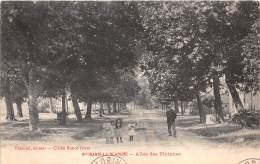 21 - COTE D OR / Sainte Marie La Blanche - 218943 - Allée Des Platanes - Autres Communes