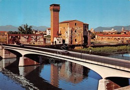 Cartolina Pisa Antica Cittadella Sul Lungarno 1980 - Pisa