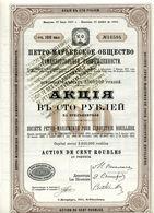 Société PÉTRO-MARIEWSKOE Pour L'INDUSTRIE HOUILLÈRE - Russie