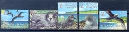 PITCAIRN ISLANDS (OCE 106) - Marine Web-footed Birds