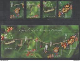 BERMUDA, 2016, MNH, LIFE CYCLE OF MONARCH BUTTERFLY, BUTTERLFIES, CATERPILLARS, 4v+SHEETLET - Schmetterlinge