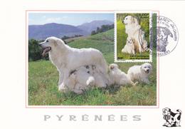 Carte Maximum FRANCE N° Yvert 3285 (MONTAGNE Des PYRENEES) Obl Sp Ill 1er Jour Gennevilliers (Ed Artpyr) - Cartes-Maximum