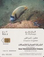418/ Oman; Chip, Emperor Angelfish - Oman