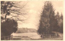 Houyet - CPA - Domaine Royal De Fenffe - Houyet