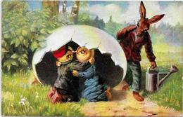 CPA Lapin Bunny Position Humaine Habillé Circulé Poussins Type Thiele - Dressed Animals