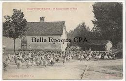10 - DROUPT-Sainte-MARIE - Le Rassemblement Des Oies ++++ Ch. Granddidier, Troyes ++++ RARE - Autres Communes