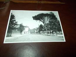 B689  Udine Foto Brighelli Cm15x10 - Fotografia